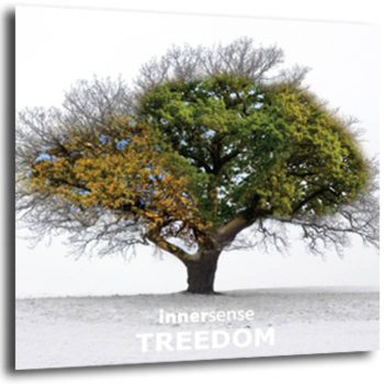 Treedom - music for yoga, tai chi, relaxation